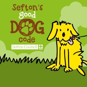 The Sefton Good Dog Code: What You Need To Know