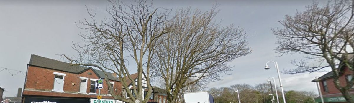 Sefton Council asked to fell diseased tree on Chapel Lane, Formby