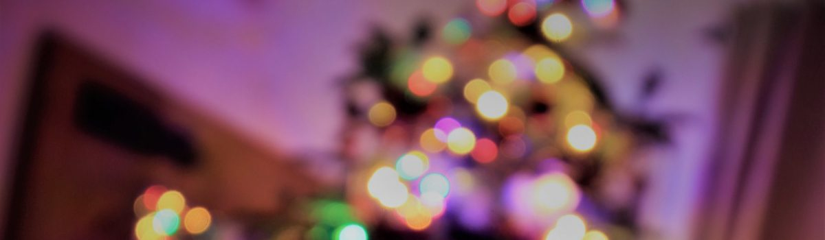 Enjoy the festivities says Council leader as Christmas arrangements are announced