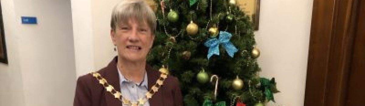 Festive joy needed more than ever for Mayor's Christmas Toy Appeal