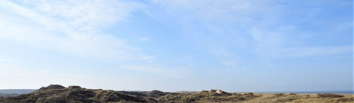 Celebrating Sefton's coast on World Wetlands Day 2021