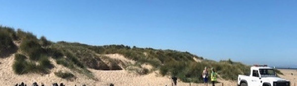 Enjoy the warm weather at Sefton's beaches but don't be a litter bug