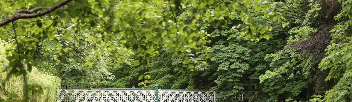 Sefton Council set to improve Botanic Gardens lakeside ahead of major transformation consultation